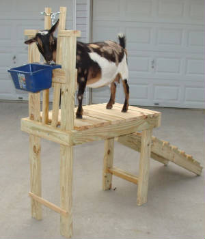 English Furniture By Lazy Boy Goat Stanchion Plans Home